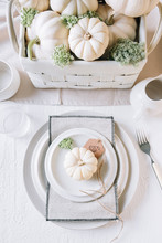 Table Settings With White Pumpkins