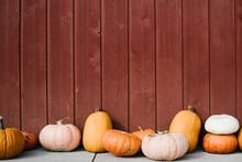 Varitey Of Pumpkins Lined Up I...