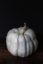 Light Green Pumpkin On Dark Ba...