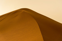 Detail Of A Dune At Sunset