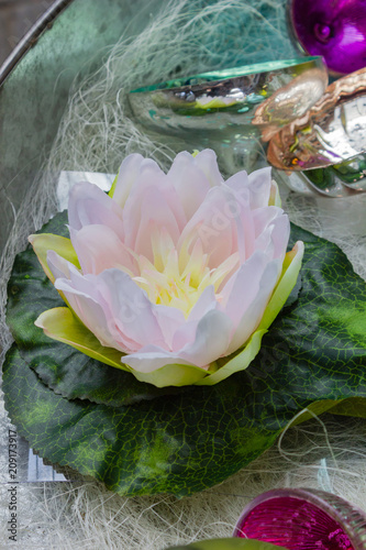 Garden Poster lotus and frog garden decoration