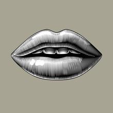 Female Sexy Lips