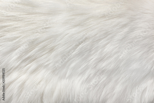Fotografija white natural fur background