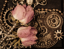 Dry Roses With Screws Instead ...