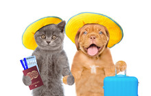Kitten And Puppy In Summer Hats Holds Suitcases, Airline Tickets And Passport Ready For A Vacation. Isolated On White Background