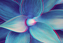 Abstract Close Up Of Agave Plant With Glitched Out Effect Floral Turquoise Pattern, Neon Light Digital Signal
