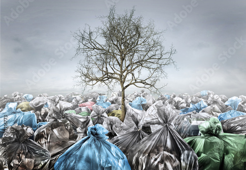 Fototapety, obrazy: Pollution concept. Dead tree in area full of trash on a gloomy background. Save planet.