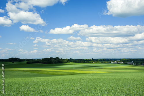 Fotobehang Platteland Large fields, forest and blue sky