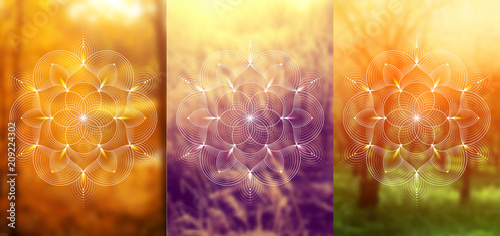 "Fotografia  Set of three template for card or poster, vertical format; Spiritual abstract sacred geometry on wonderful blurred background; ""Flower of life"" and lotus; Yoga, meditation and relax"