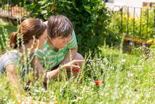 Geistig Behinderte Frau Im Garten, Pflanzenkunde Und Ausflug Als Palliative Therapie