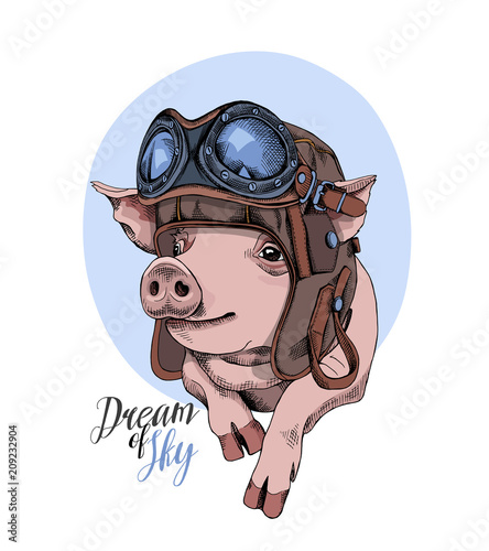 Photo Funny Pig in a retro leather aviator helmet on a blue background