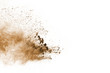 canvas print picture - Brown powder explosion isolated on white background.