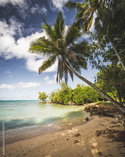 In de dag Centraal-Amerika Landen Traumhafter Strand auf Oahu, Hawaii