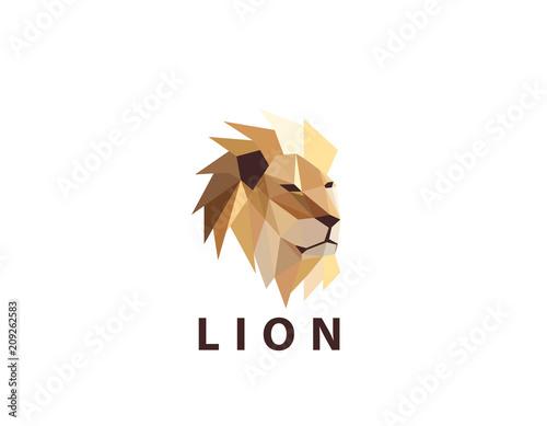 Ilustracja logo kolorowe głowy lwa