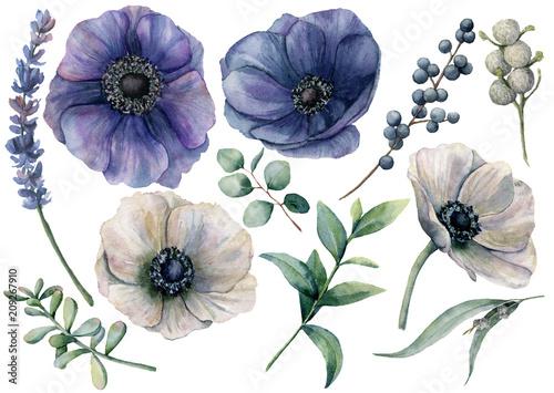 Slika na platnu Watercolor white and blue floral set