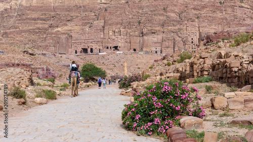 Papiers peints Saumon Giordania, Petra