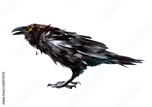 painted bird Raven on a white background side view