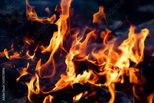 Fotobehang Vuur / Vlam Soft flame fire and smog is burning garbage or waste on dark background. Incineration of waste causes air pollution and global warming. Flames are reddish orange depending on the type of fuel.