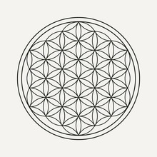 Flower Of Life Mandala For Yog...