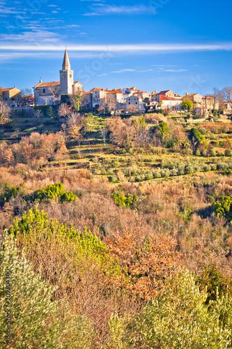 Staande foto Droogte Idyllic hill village of Groznjan panoramic view