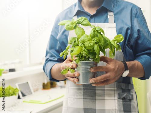 Fotobehang Aromatische Mah holding a pot of fresh basil