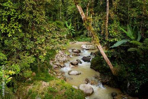 Foto op Canvas Asia land Cameron Highlands Parit Falls trekking