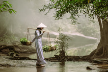 The Vietnamese Girl In The Tra...