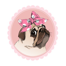 Portrait Of A Pug In A Pink Po...