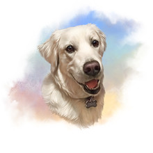 Illustration Of Labrador Retriever. Guide Dog, A Disability Assistance Dog. Watercolor Animal Collection. Art Background. Dog Portrait: Hand Painted Illustration Of Pet. Good For Banner, T-shirt, Card