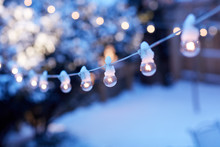 Christmas Party Lights In A Winter Garden
