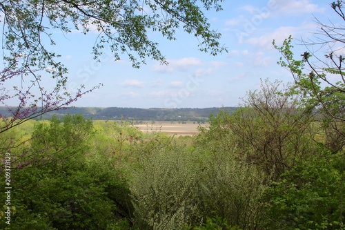 Fotobehang Blauwe hemel The country landscape from the trees of the forest.