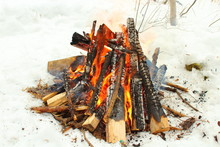 Bonfire In The Forest In The W...