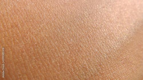 Tela human skin texture