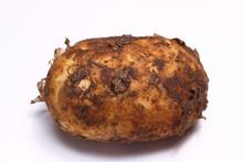 Dirty Potato On A White Background