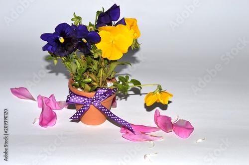 Papiers peints Fleur floral arrangement