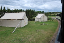 Tentes En Forêt
