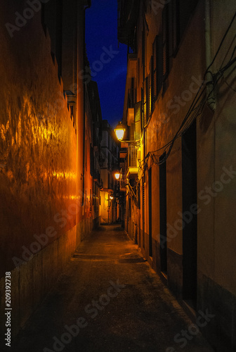 Printed kitchen splashbacks Narrow alley Night street. Narrow street. Dark street illuminated with street lamps. Stone pavement in the old town. Evening urban landscape.