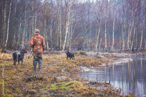 A process of hunting during hunting season, process of duck hunting, group of hunters and drathaar, german wirehaired pointer dog