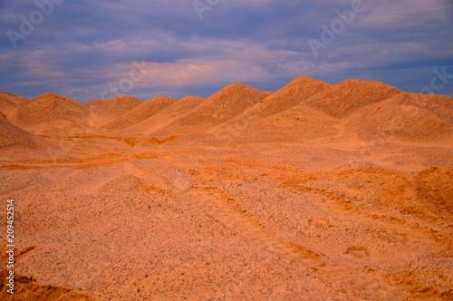 Foto op Plexiglas Koraal пустыня