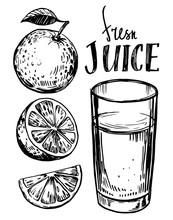 Orange Juice. Hand Drawn Sketch Converted To Vector