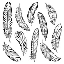 Indian Feather Set Hand Drawn. Vector Illustration.