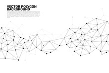 Network Connecting Dot Polygon...