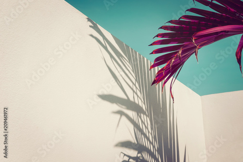 Spoed Foto op Canvas Palm boom Purple palm leaves against turquoise sky and white wall. Vivid colors, creative colorful minimalism. Copy space for text