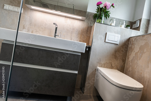 Modernes Badezimmer Toilette Und Waschbecken Buy This Stock Photo