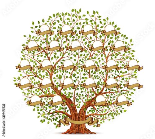 Fotografie, Obraz  Family Tree template vintage vector illustration