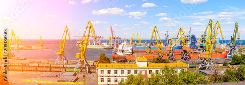 Foto op Plexiglas Poort Panorama of the port cranes ships containers