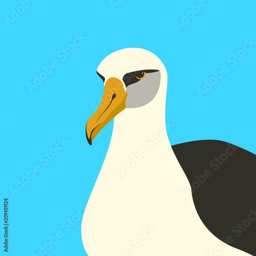 Obraz na plátne albatross  bird vector illustration flat style front