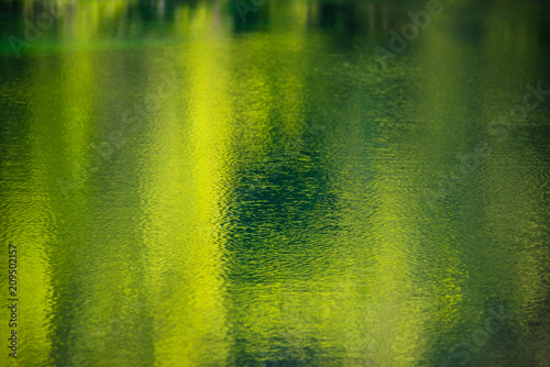 obraz dibond Reflection on the water