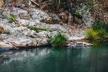 Currumbin Rock Pools Water Stream Gold Coast