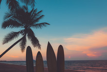 Silhouette Surfboard On Tropic...